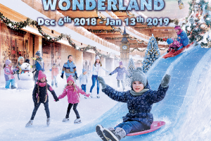 PIM Winter Wonderland 2018